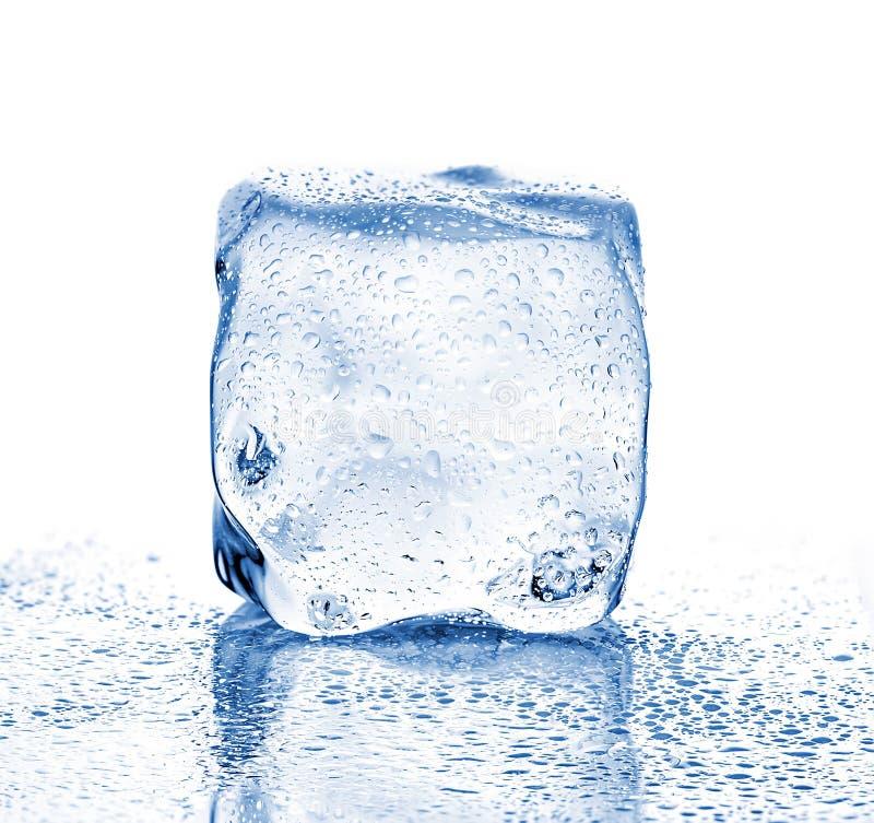 Плавя конец-вверх куба льда на белой предпосылке стоковые фотографии rf