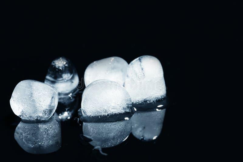 плавя кубы льда на черной предпосылке стоковое фото rf