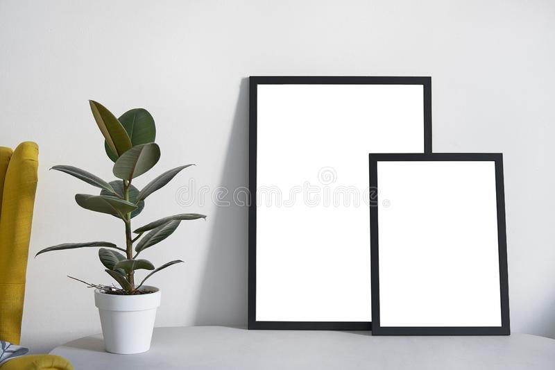 2 плаката в различных размерах в черной рамке в нордическом стильном современном интерьере, фикусе, живущей комнате Пустой космос стоковое фото