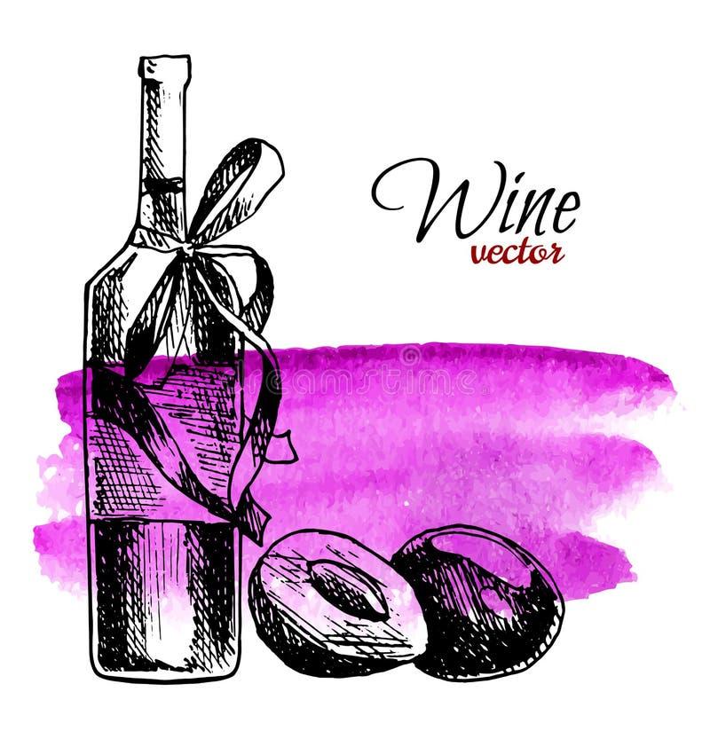 Плакат руки вычерченный с предпосылкой акварели Напиток пива или вина сидра ягоды сливы Бутылка и слива вектора стеклянная Адвока иллюстрация вектора
