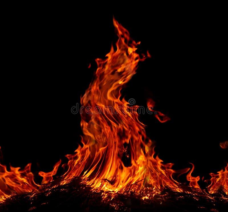пламя стоковые фото