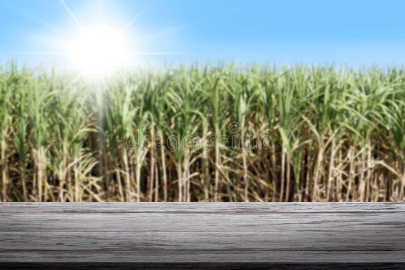 Планка фона и древесины сахарного тростника, планка сахарного тростника и древесины предпосылка, таблица планки пола текстуры пре стоковое изображение