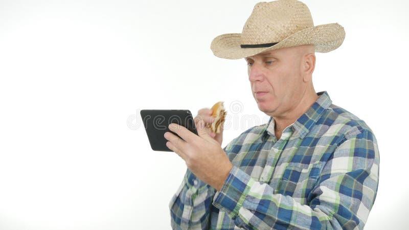 Планшет пользы фермера электронный ест и прочитал сообщения стоковые изображения