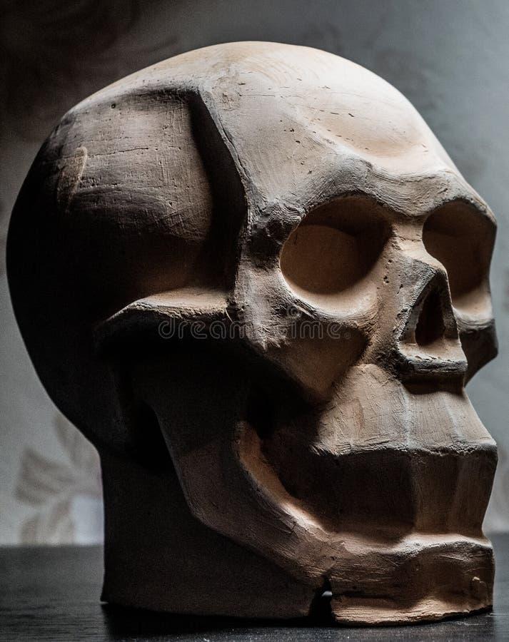 План черепа для рисовать и моделирования с глиной стоковое изображение