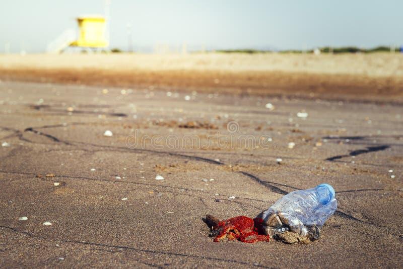 Пластиковая бутылка и погань загрязняя пляж стоковые фотографии rf