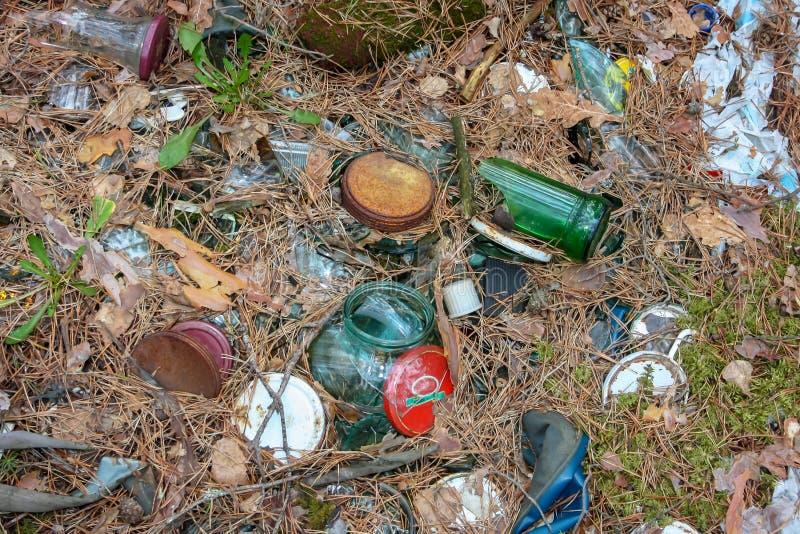 Пластиковое загрязнение нашло в forrest накопление пластиковых объектов  стоковое изображение rf