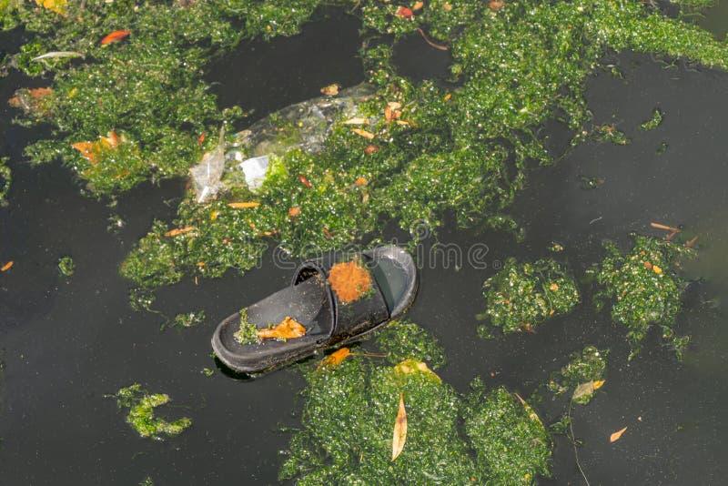 Пластиковый отход в загрязнении причин воды - концепция уничтожения отбросов загрязнения окружающей среды и стоковое изображение