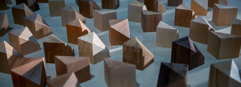 Пластичная модель стоковые фотографии rf