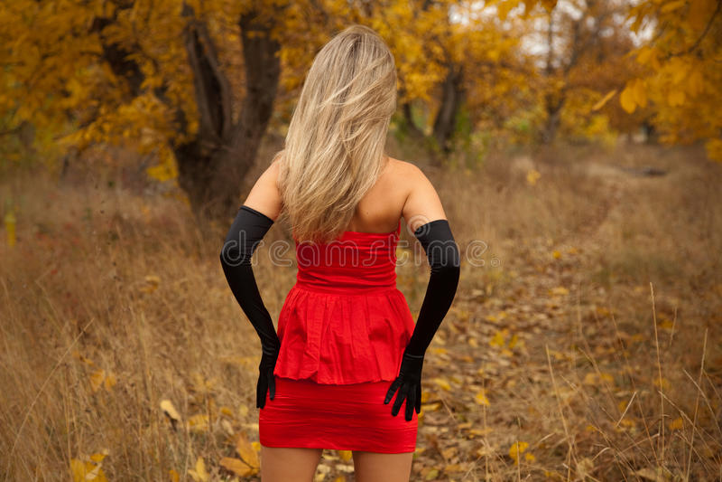 платья девушки детеныши взгляда задего довольно красные стоковые изображения