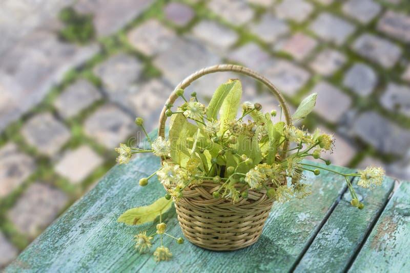 Плетеная корзина с липой цветет на зеленом деревянном столе на старом булыжнике с предпосылкой растительности стоковая фотография rf