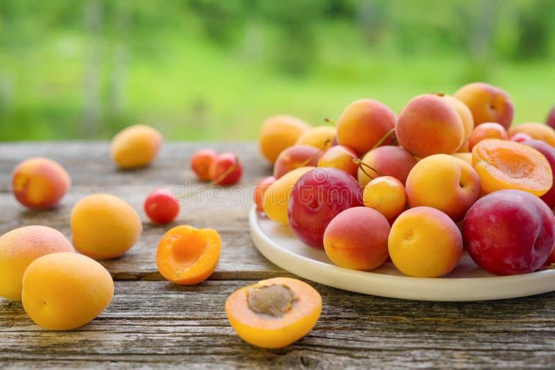 Плита со свежими абрикосами, сливами и вишней на деревянном столе стоковая фотография