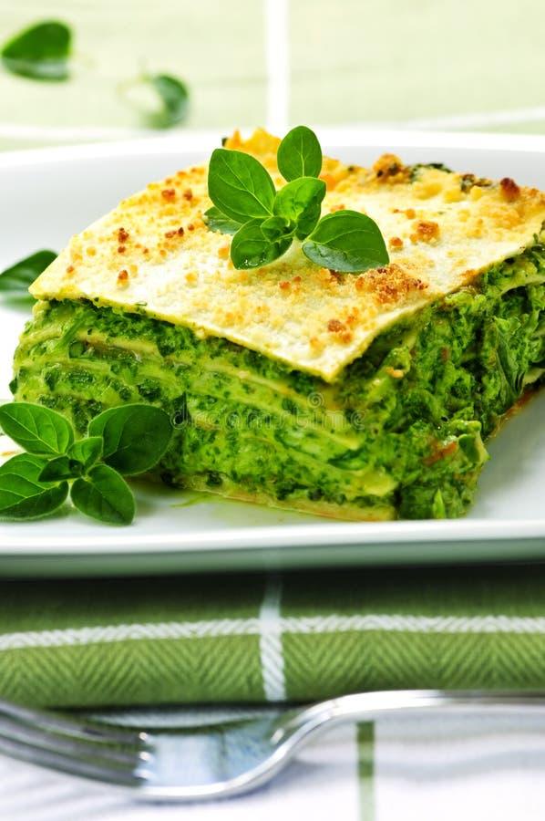 плита lasagna vegeterian стоковые фото