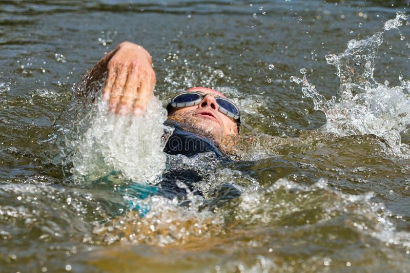 Пловец в заплывании backstroke стоковые изображения