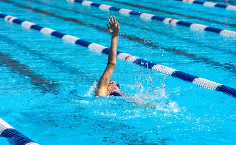 пловец backstroke стоковая фотография rf
