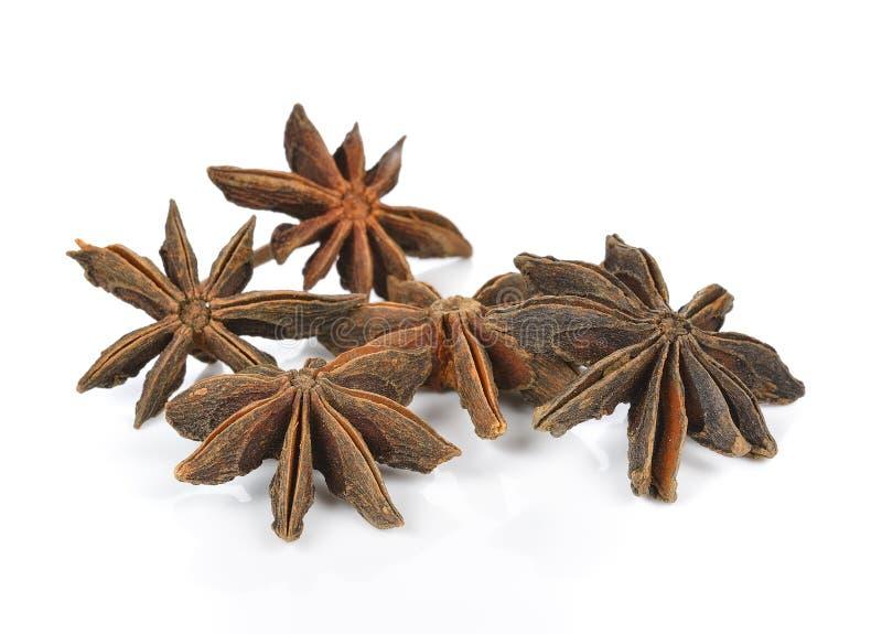 Плодоовощи и семена специи анисовки звезды изолированные на белой предпосылке стоковая фотография rf