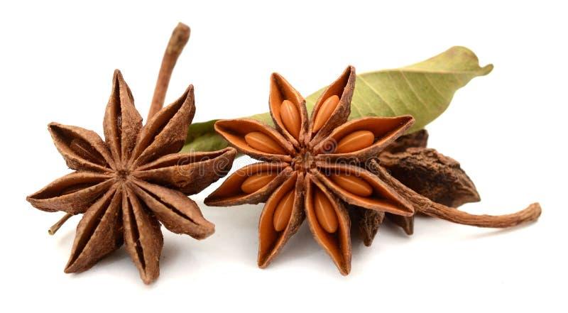Плодоовощи и семена специи анисовки звезды изолированные на белой предпосылке Еда, естественная стоковые фото