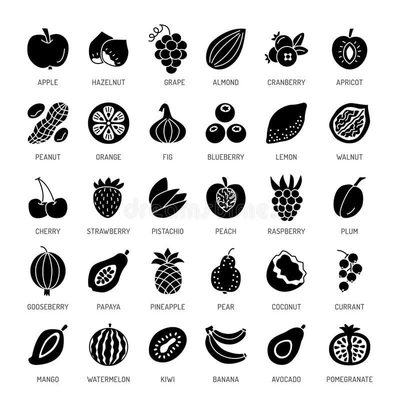 Плодоовощи, ягоды & гайки Еда Vegan & вегетарианца еда здоровая иллюстрация штока