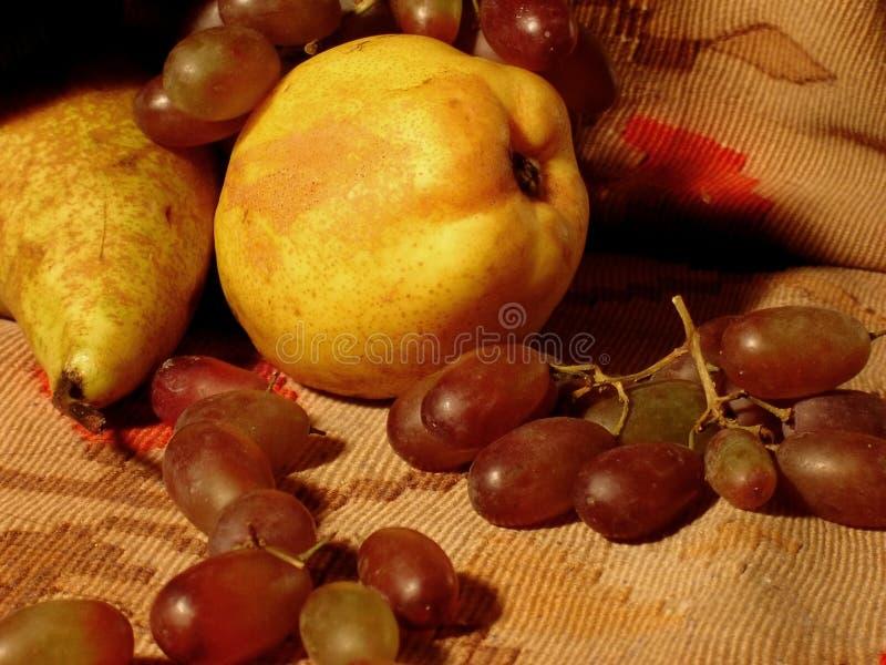Download плодоовощи стоковое изображение. изображение насчитывающей лоза - 481579