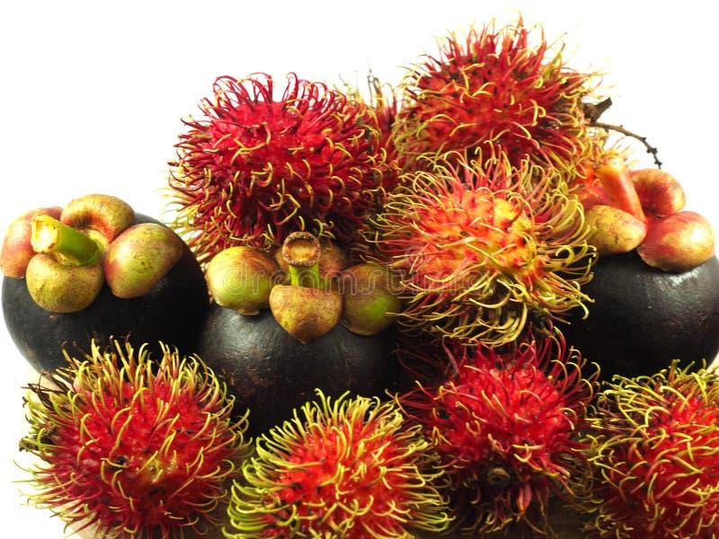 Плодоовощ Азия мангустана рамбутана тропический стоковые фотографии rf