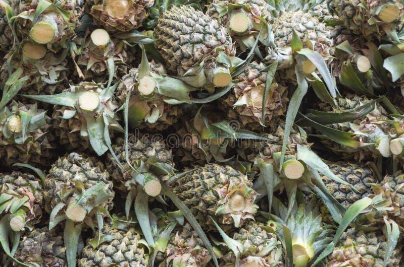 Плодоовощ ананаса или ананаса стоковое фото rf