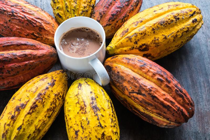 Плодоовощ и бобы кака какао с чашкой горячего какао стоковая фотография rf