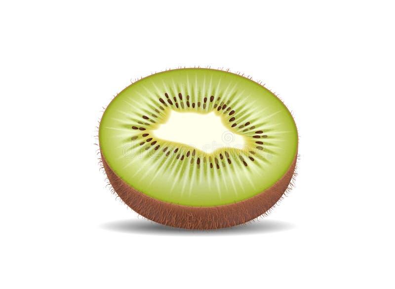Плодоовощ кивиа отрезанный в половинных кусках Высококачественное естественное eco органическое иллюстрация вектора