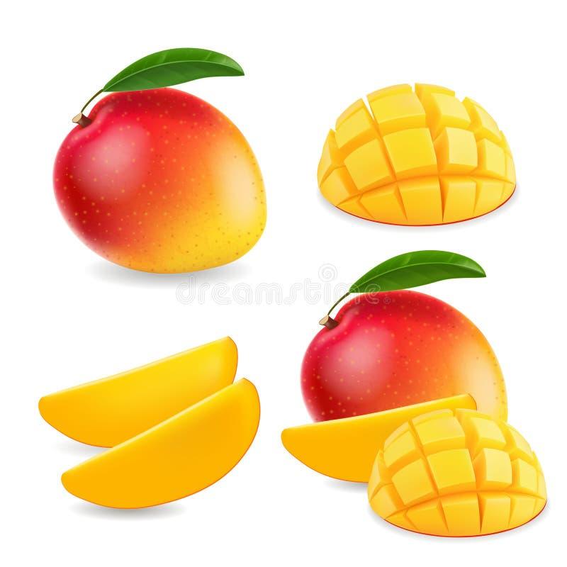 Плодоовощ манго реалистический весь и иллюстрация частей иллюстрация штока