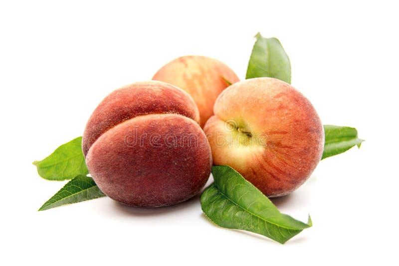 плодоовощ персика при зеленые лист изолированные на белой предпосылке стоковые изображения rf