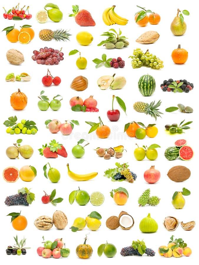 плодоовощ собрания экологический стоковое изображение rf