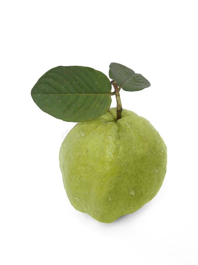Плодоовощ Guava свежий на изолированной белой предпосылке стоковое фото rf