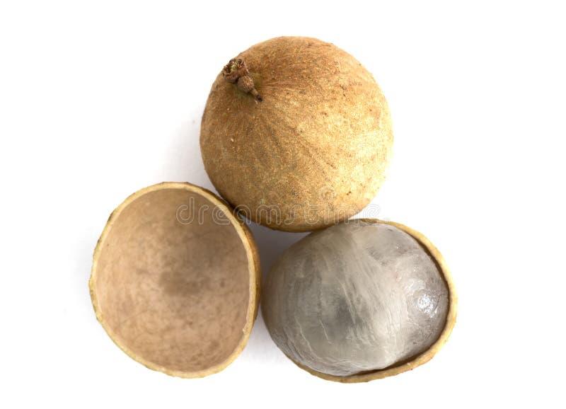 Плодоовощ Longan 2 Dimocarpus при корка sheel половинная показывая translu стоковые изображения rf