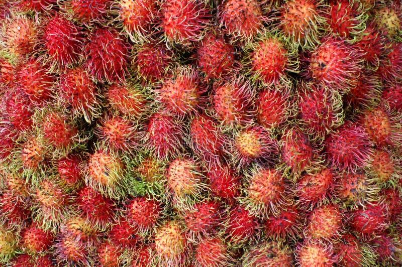плодоовощ rabutan стоковое изображение