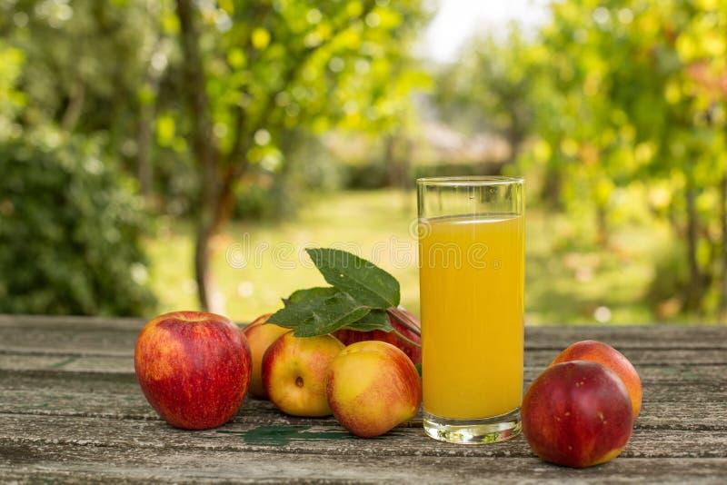 Плоды и сок стоковая фотография