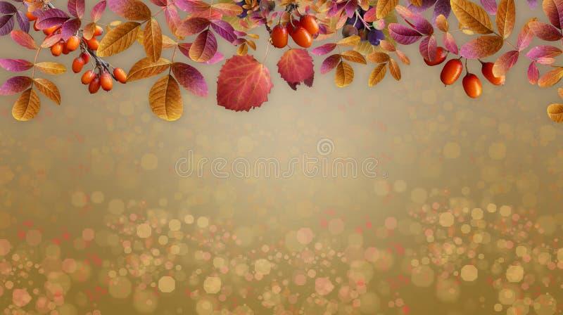 Плоды предпосылки осени зрелые и пожелтетые листья стоковое изображение