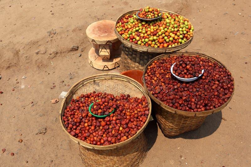 Плоды Marula от Малави стоковое изображение rf