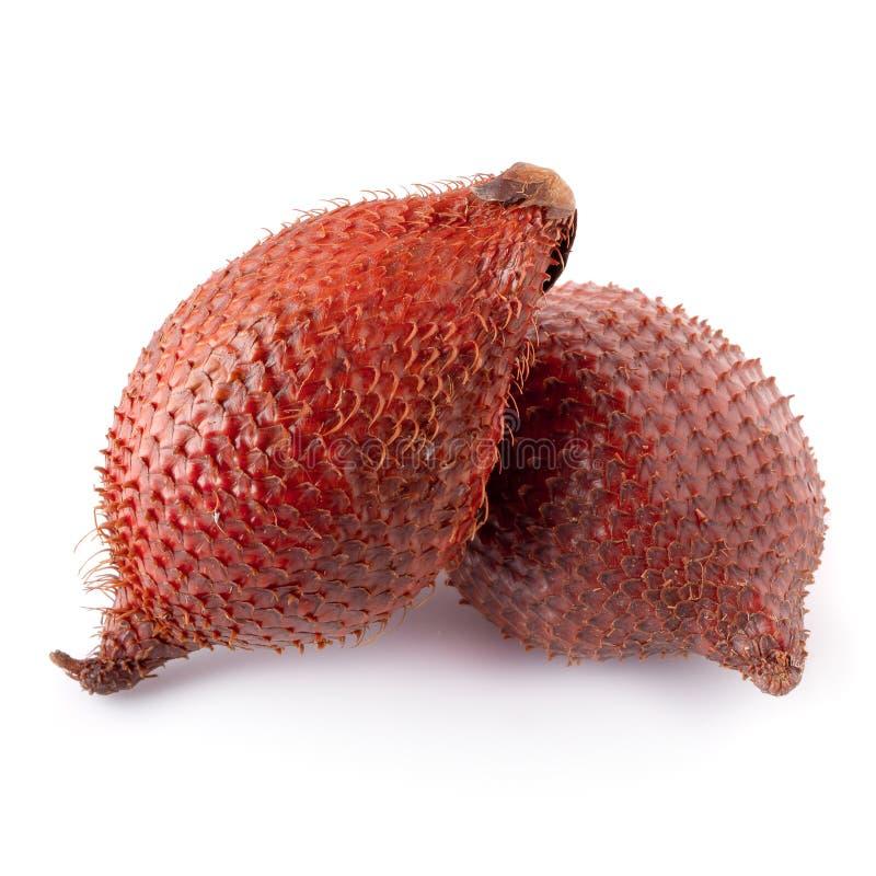 Плод змейки Salak над белой предпосылкой стоковое изображение