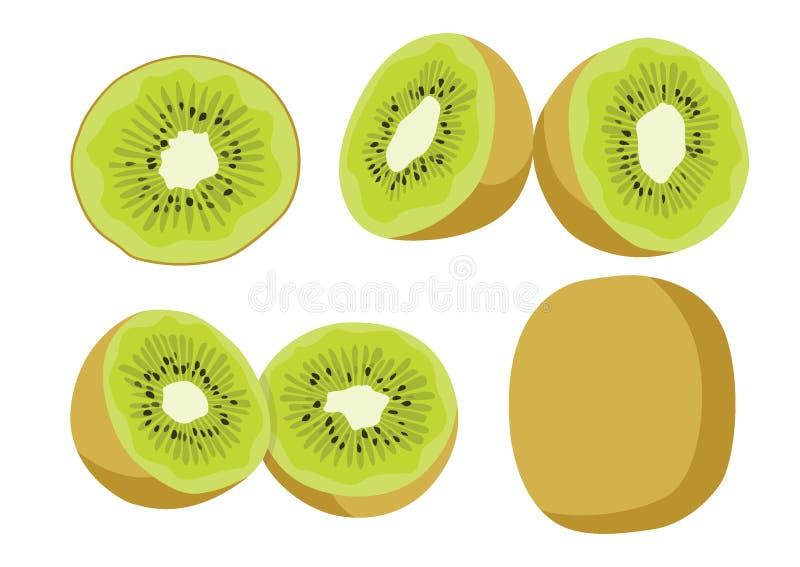 Плод и половина кивиа изолированные на белой предпосылке иллюстрация вектора