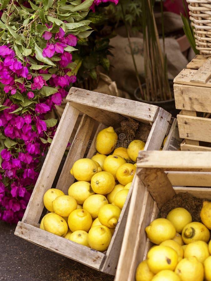 Плод лимона предпосылки в деревянных коробках и цветках стоковая фотография rf
