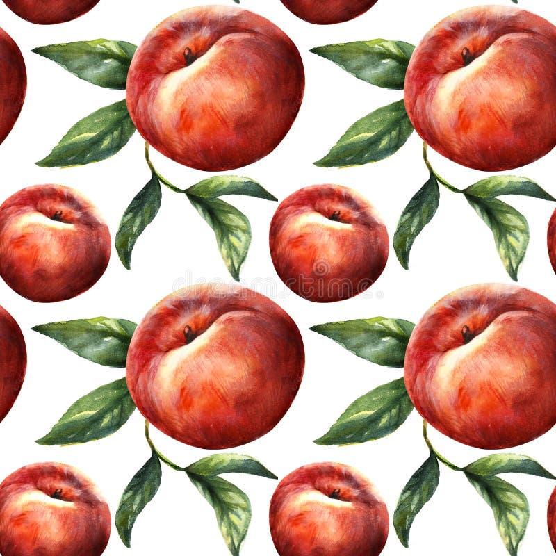 Плод персика с листьями изолированными на белой предпосылке Тропические обои нектарина, сочная картина натуральных продуктов иллюстрация штока