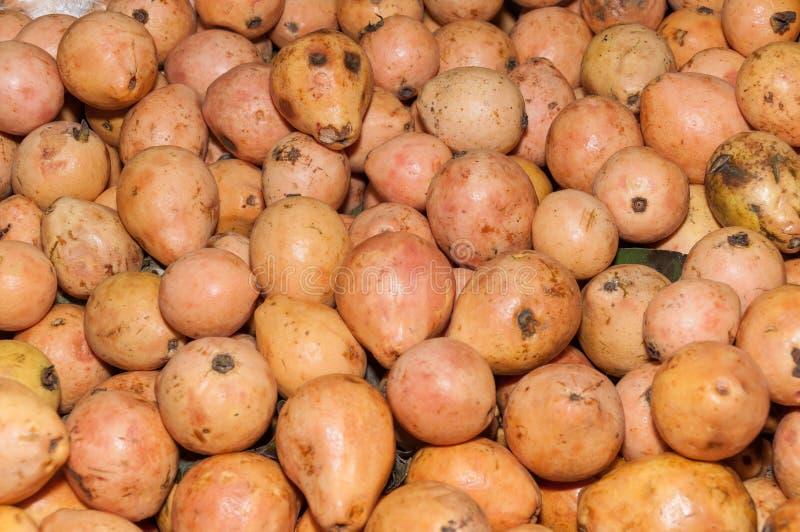 Плод Guava в супермаркете - guajava Psidium стоковое фото rf
