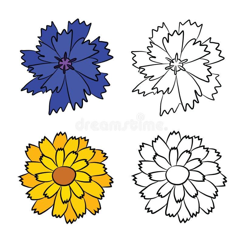 Плоские чертежи Cornflower и Calendula иллюстрация штока
