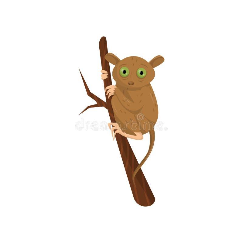 Плоский значок вектора более tarsier усаживания на ветви дерева Малый коричневый примат с большими зелеными глазами, длинным хвос иллюстрация вектора