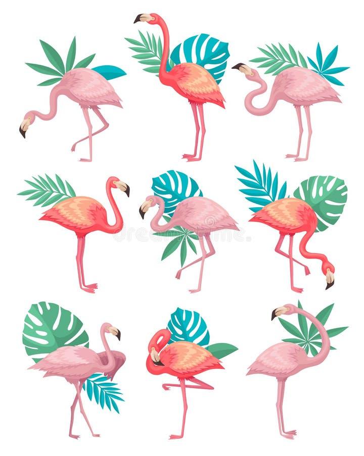 Плоский комплект вектора красивых фламинго с зелеными листьями тропических заводов Птицы с розовыми пер, длинными ногами и бесплатная иллюстрация