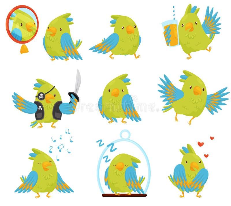 Плоский набор вектора попугая в различных ситуациях Милая птица с яркими ыми-зелен и голубыми пер шарж медведя авиатора рисует иг бесплатная иллюстрация