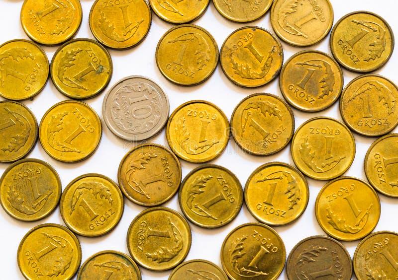 Плоский слой смешанных желтозолотых польских монет с одной серебряной монетой более высокой номинальной стоимости, изолированной  стоковое фото