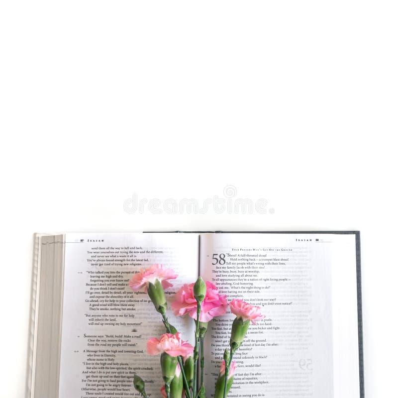 Плоское положение: Библия и пинк, красный, розовый букет цветка E стоковая фотография rf