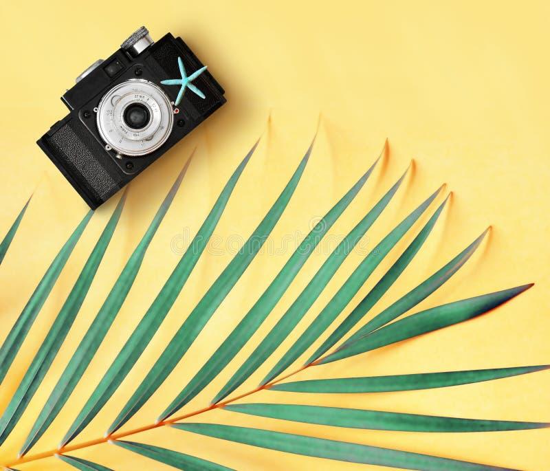 Плоское положение ретро листьев камеры и ладони фото против концепции желтой предпосылки минимальной творческой тропической стоковая фотография rf
