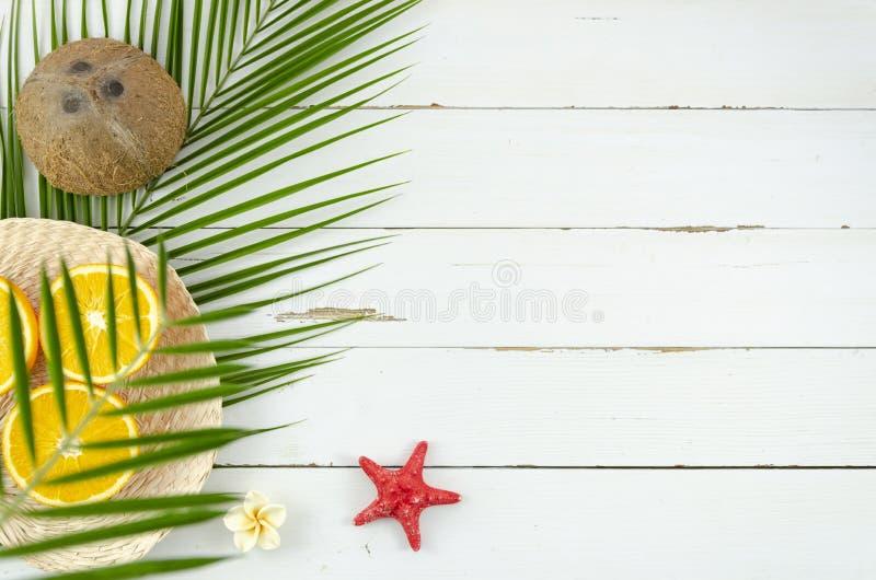 Плоское положенное лето приходя концепция Кокос тропических плодов и  стоковые изображения