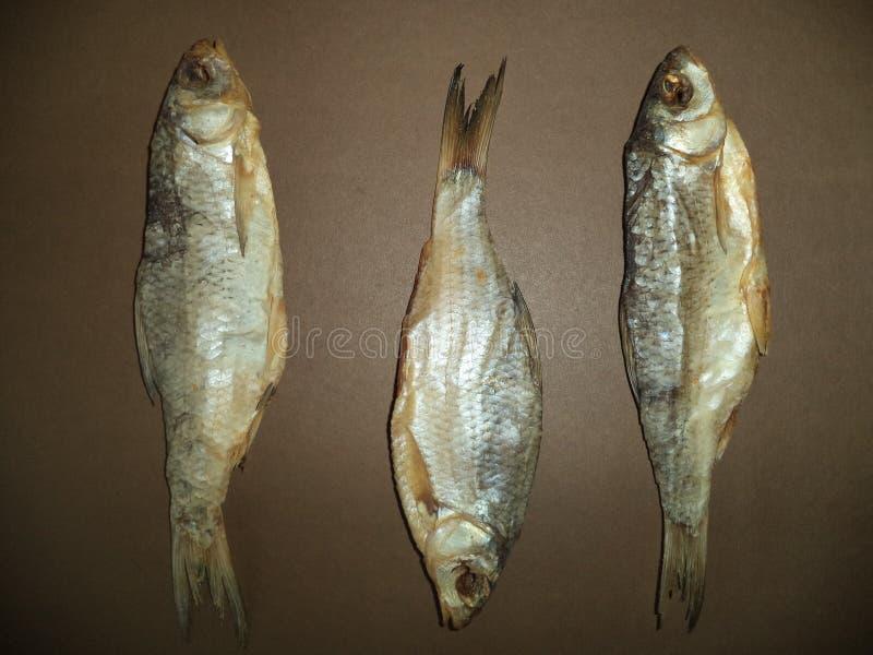 Плотва 3 свежая высушенная рыб стоковое фото