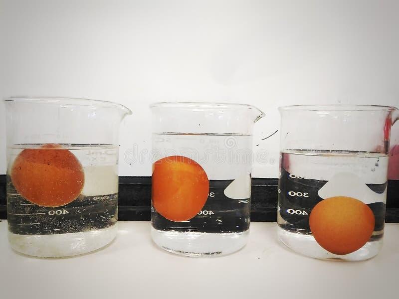 Плотность воды стоковые фото
